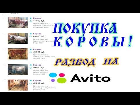 Обзор MultiGaminator Казино Мультигаминатор Украина Casino.
